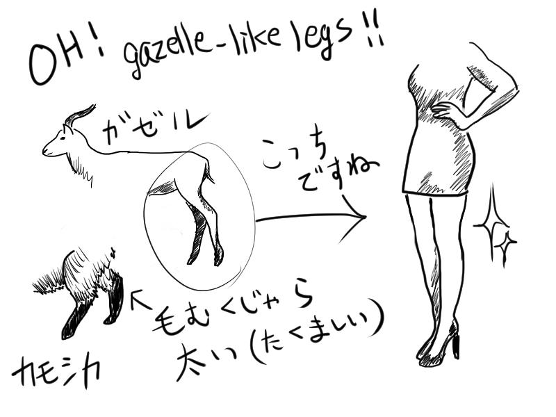 ガゼルのようなしなやかな脚