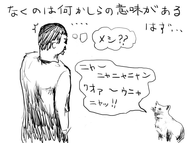 ネコの気持ちを汲み取れ